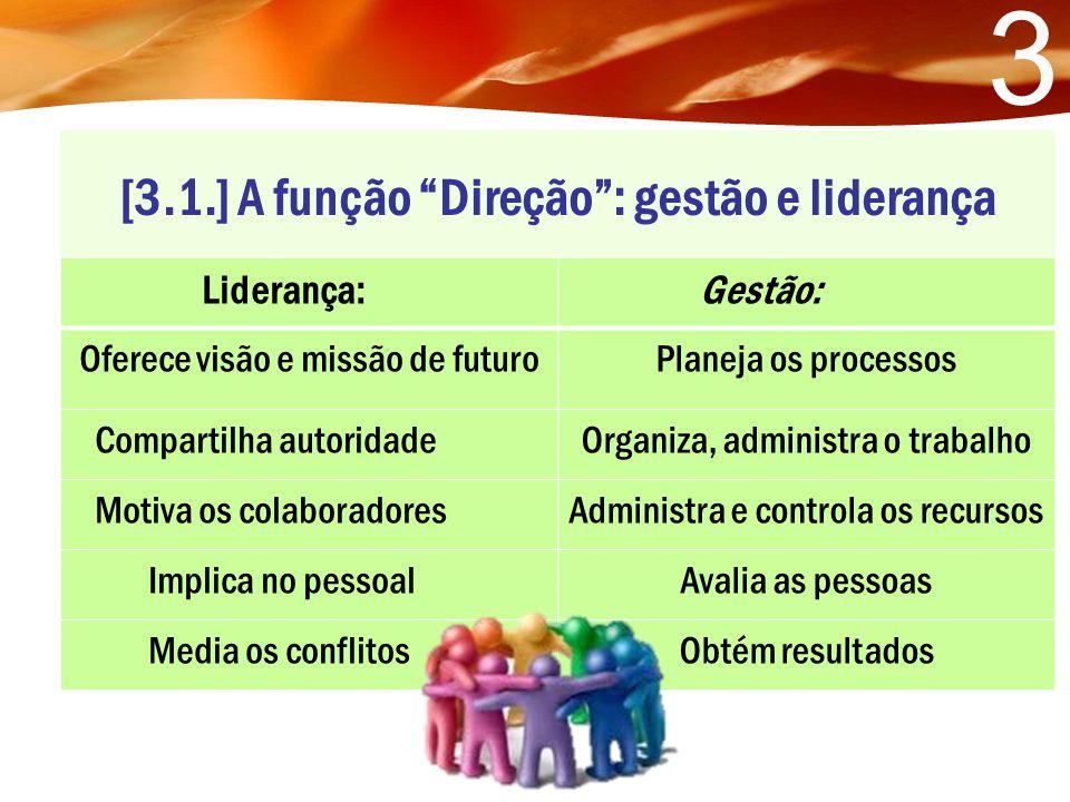 [3.1.] A função Direção : gestão e liderança